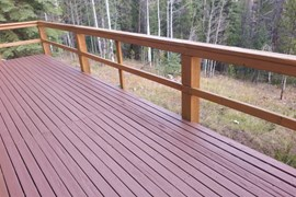 Deck and Handrail Stain